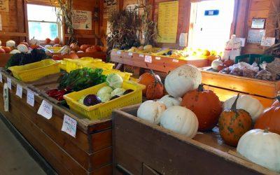 Christensen's Vegetable Farm