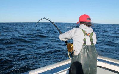 MacDougall Bluefin Tuna Charters