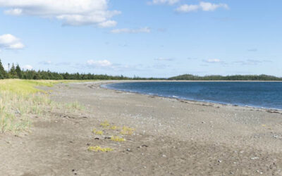 Port Shoreham Beach Provincial Park